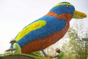 flower-bird